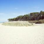 Residence Il Giaguaro - Sea and sand