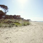 Residence Il Giaguaro - Mare e spiaggia