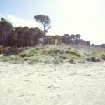 Residence Il Giaguaro - Spiaggia